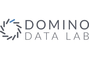 Image: Domino Data Lab
