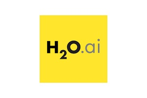 Image: H20.ai
