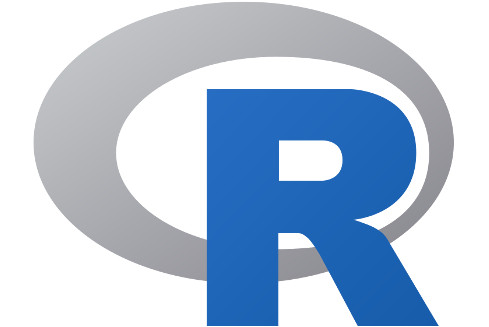 Image: The R Foundation